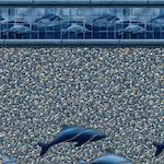 Blue Dolphin Seabrook